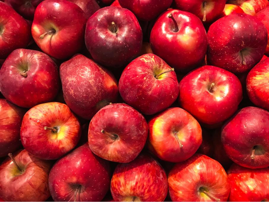 アップルサイダービネガー リンゴ酢 違い
